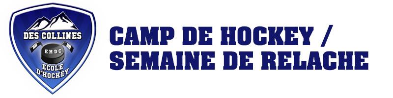 Camp de hockey / Semaine de relâche 2019
